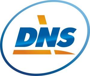 днс-лого1